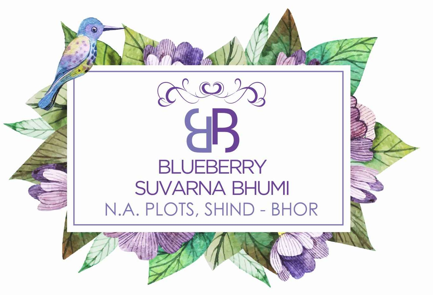 Blueberry : Shind, Bhor